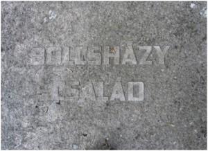 bolushazy1